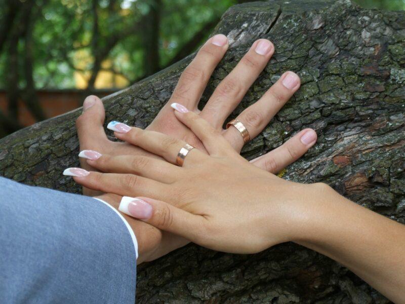 Волгоградка заключила брак с иностранцем, чтобы тот смог получить гражданство России