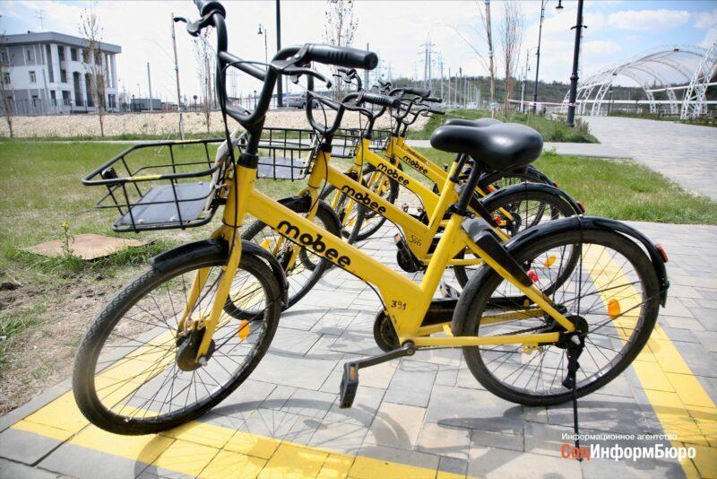 Хулиганы могут оставить Волгоград без велошеринга