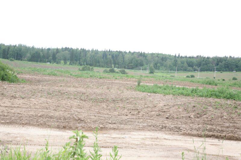 В Госдуму внесли законопроект об изъятии неиспользуемых земель