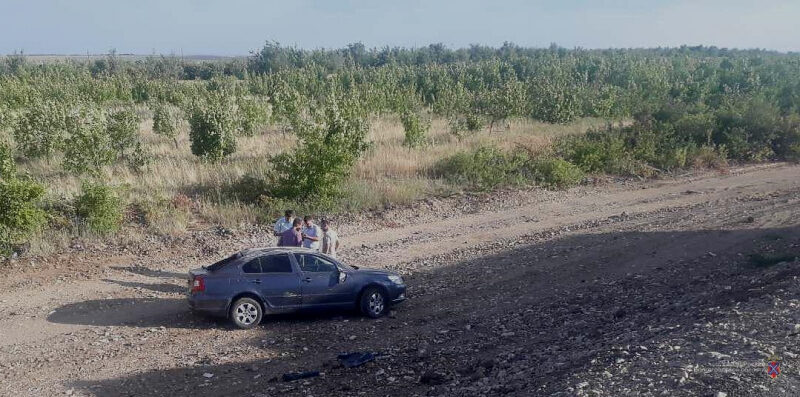 69-летний житель Кемеровской области устроил массовое ДТП в Дубовском районе