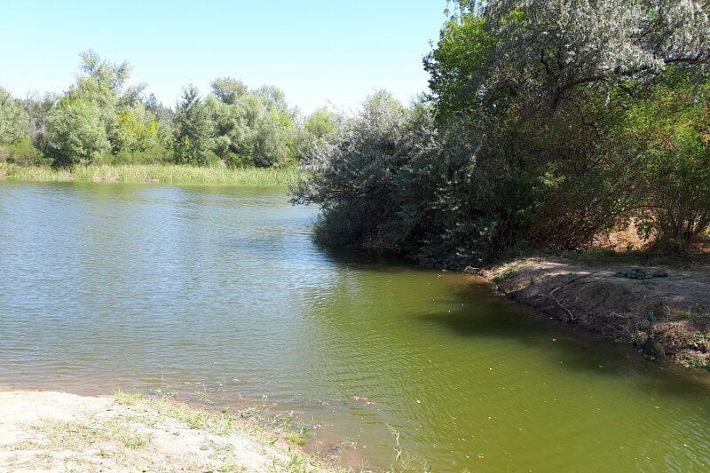 В Волго-Ахтубинскую пойму закачали 2,5 миллиона кубометров воды