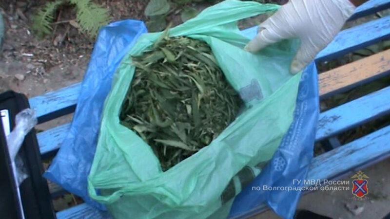 В Камышине полицейские задержали пассажира с пакетом марихуаны собственного производства