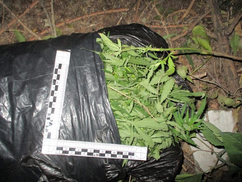 В Камышине задержали мужчину с мешком марихуаны