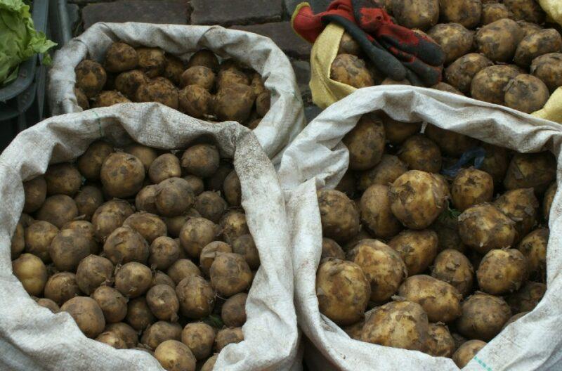 В Волгоградской области снизились цены на продукты