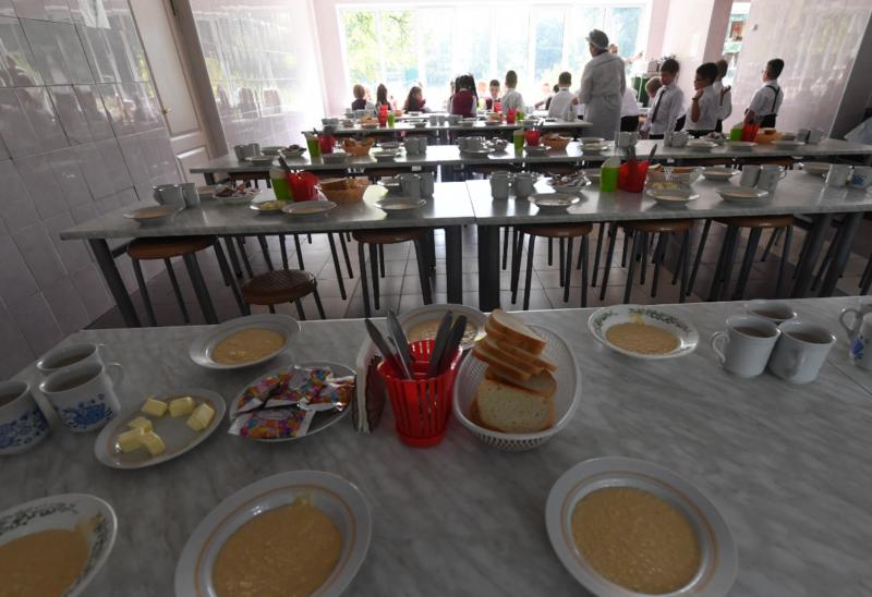 Учеников начальных классов в обязательном порядке начнут кормить горячими обедами