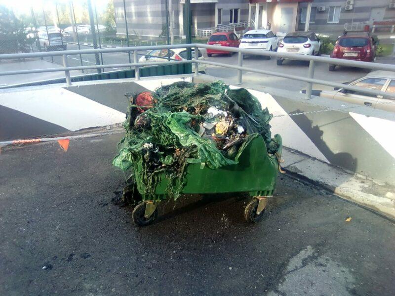 В Волгоградской области массово уничтожают мусорные контейнеры