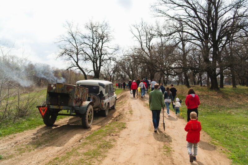 Волгоградцев приглашают для посадки деревьев в Волго-Ахтубинской пойму