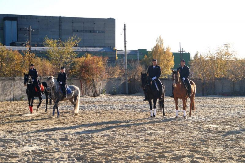 На охрану общественного порядка в Волгограде заступила полицейская кавалерия