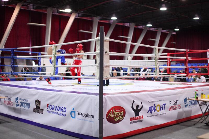 «Спортивное поколение»: в Волгограде стартовал турнир по кикбоксингу