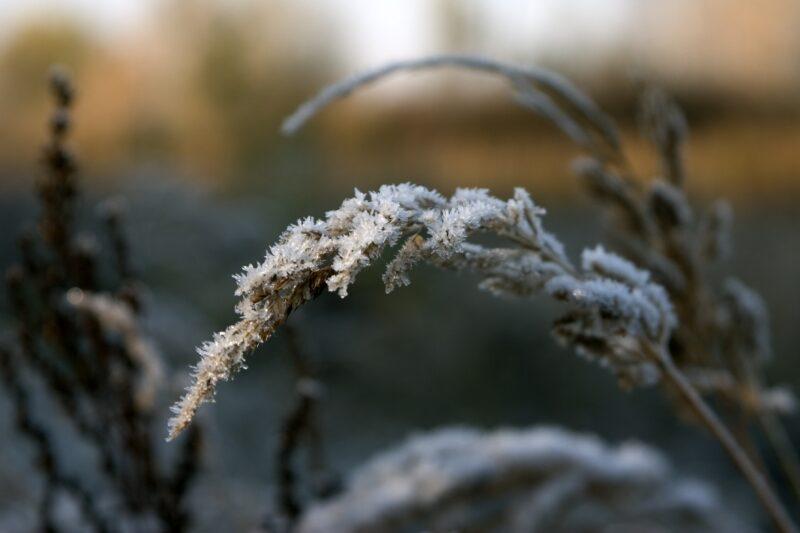 Дождь, снег и гололед ожидают волгоградцев во второй половине рабочей недели