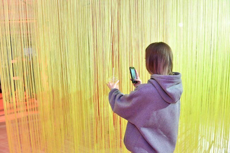 Волгоградская школьница снабжала интимными фотографиями извращенца, притворяющегося телезвездой