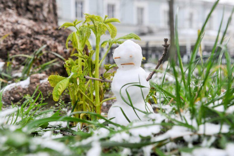 """Розовая зима"": Глава Гидрометцентра пообещал жителям юга малоснежную зиму"