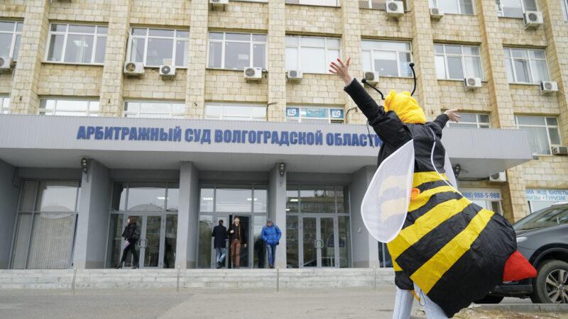 В Волгограде прошло первое заседание по абсурдному иску светлоярских чиновников