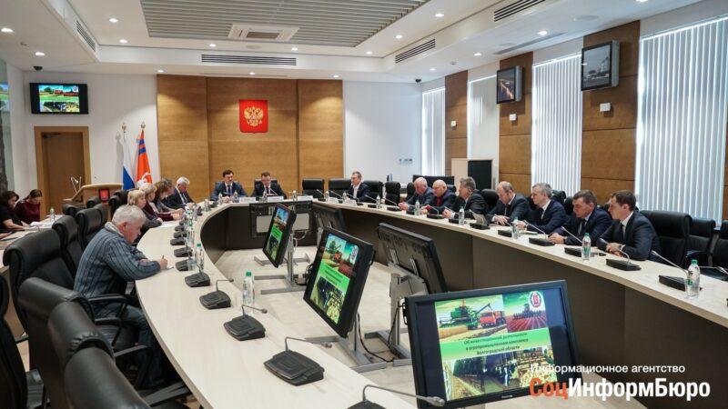 """""""Размер имеет значение"""": Когда рост сельхозпроизводства в Волгоградской области принесет деревне новое качество жизни"""