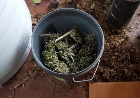 44-летний житель Среднеахтубинского района ответит за хранение полутора килограммов марихуаны