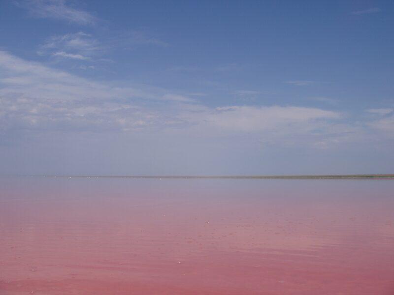 Озеро Эльтон – в топе у туристов на 2020 год
