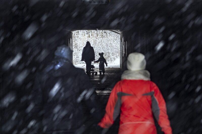 В середине недели волгоградцев ждет сильный ветер и мокрый снег с дождем