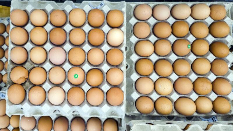 2 года в торговых сетях региона продавались яйца, не прошедшие ветконтроль