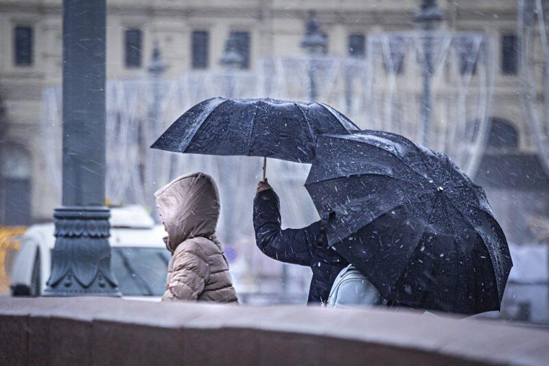 Волгоградцев ждет дождливое начало недели