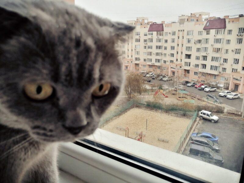 В Волгограде потеплеет до +4 градусов