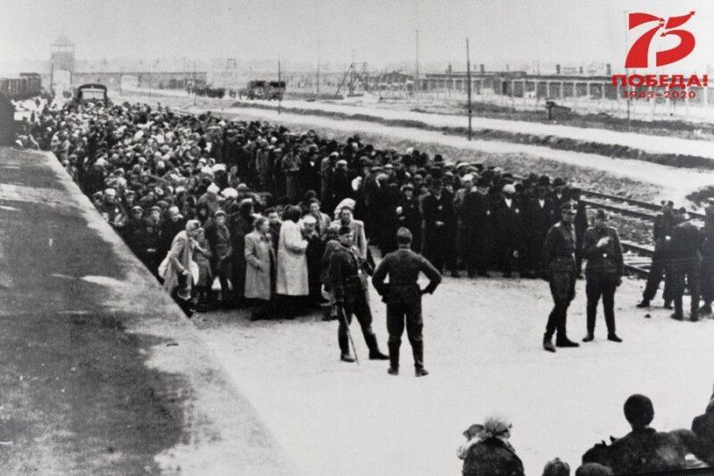 В Волгоградской библиотеке им. Горького расскажут о концлагере «Аушвиц»