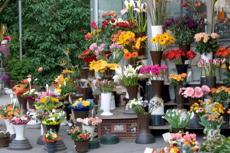 Волгоградцам рассказали о ценах на цветы к 8 марта