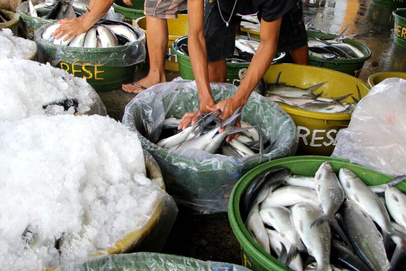 В Волгограде предприниматель готовила для покупателей просроченную рыбу