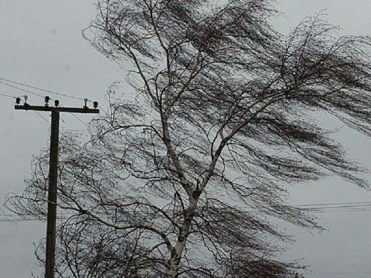 Волгоградцев предупредили о сильном ветре