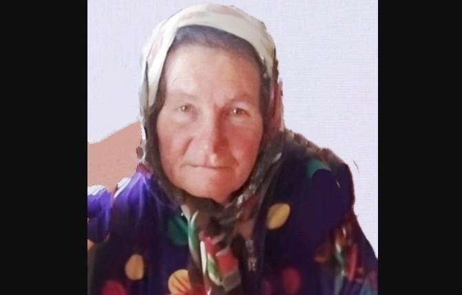 В селе Зензеватка внезапно исчезла 69-летняя Альбина Капитонова
