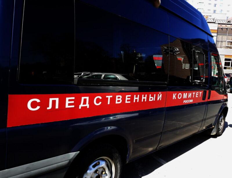 Душили подушкой и простыней: братьев из Саратова подозревают в разбойном нападении на волгоградскую пенсионерку