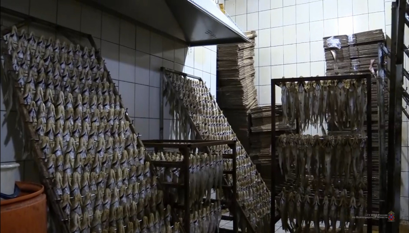 7 тонн опасных рыбных продуктов изъяли из магазинов в Волгограде