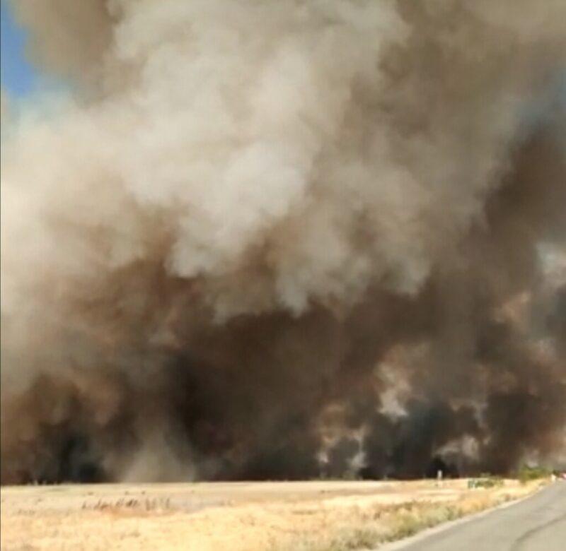 Страшный пожар в волгоградской степи попал на видео