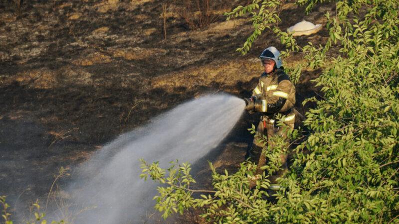Из-за лесного пожара на трассе в Волгоградской области ограничено движение