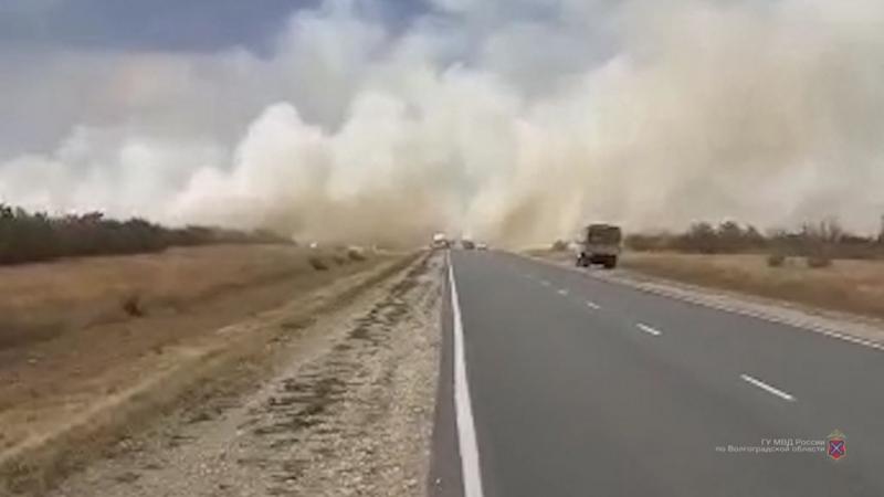 Полицейские задержали виновников страшных пожаров в Дубовском районе