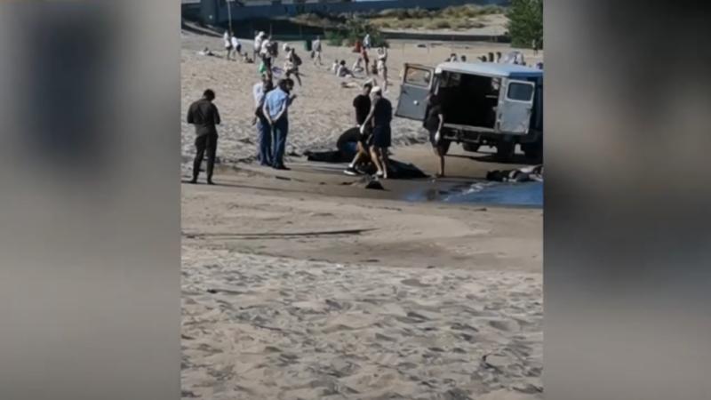 «Спасали друга»: четверо студентов-индусов утонули в Волгограде