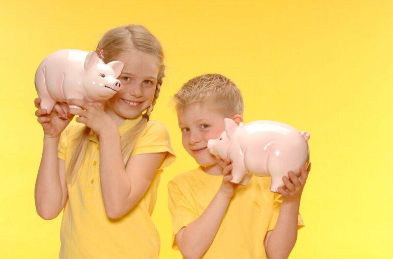 Портал детского бесплатного допобразования после обновления стал предлагать платные услуги