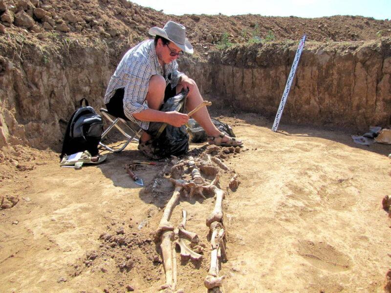 Уникальные находки раннего железного века сделали археологи Волгоградской области