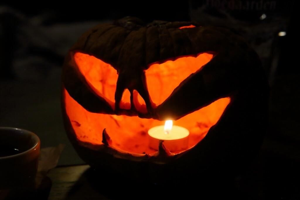 Волгоградцев приглашают на оффлайн Хэллоуин