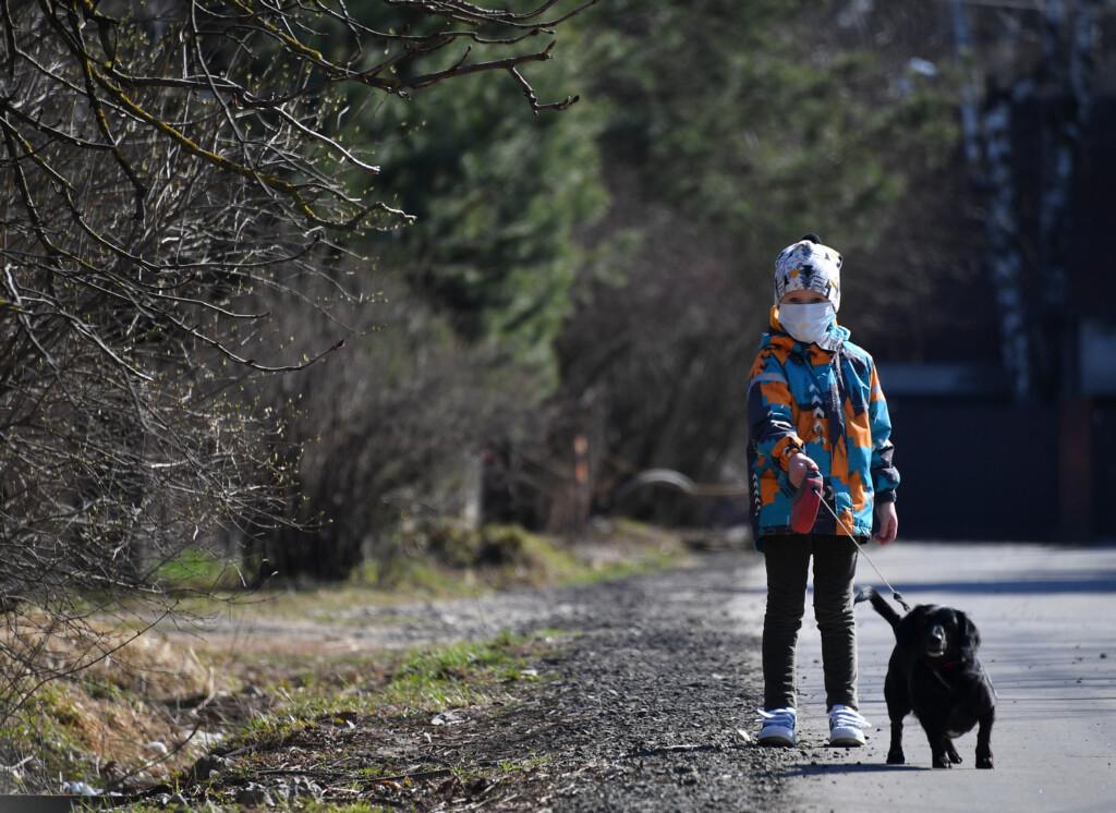 В Волгограде лечить детей с инвалидностью будут собаки