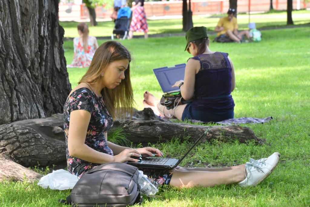 Волгоградцы могут бесплатно обучиться  IT-профессиям