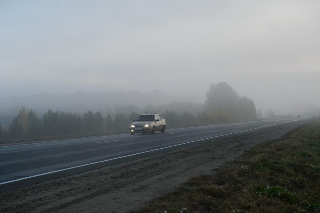 В Волгоградской области ожидается туман