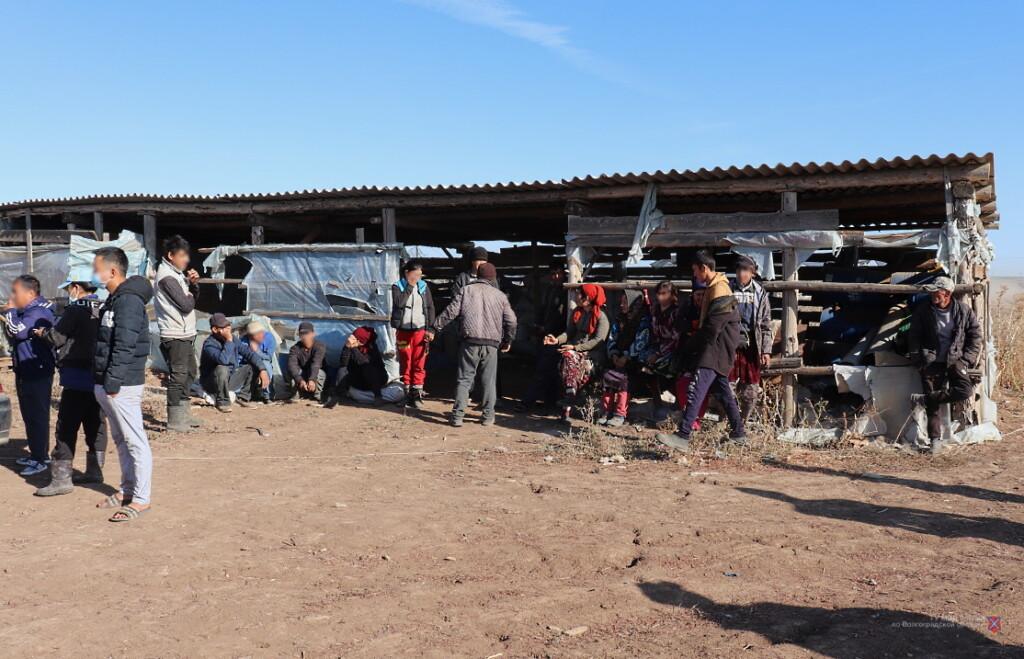 Работали нелегально, садились пьяными за руль и воровали воду: под Волгоградом прошли рейды по мигрантам