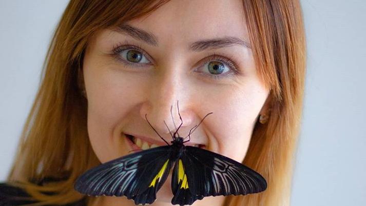 «Это было экстремально!»: в пандемию волгоградка спасла свой бизнес с живыми бабочками