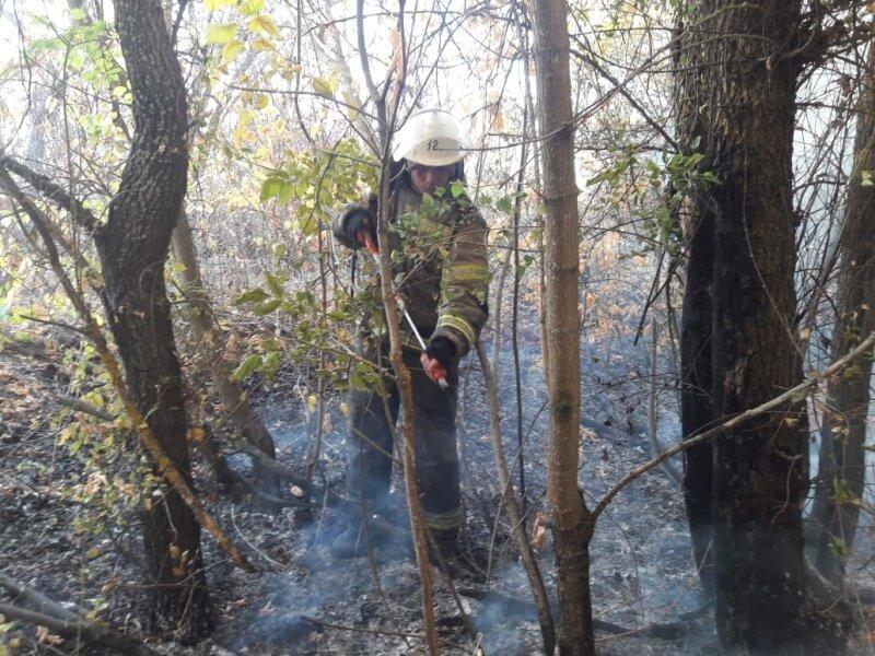 Страшный ветер осложнил пожароопасную обстановку в регионе