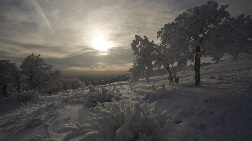 Стало известно, в каких волгоградских природных парках можно отдыхать зимой
