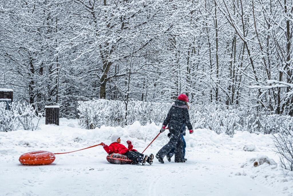 Синоптики уточнили погоду в Волгограде на 1 января 2021 года