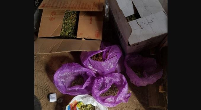 У 20-летнего жителя Михайловки изъяли килограмм марихуаны