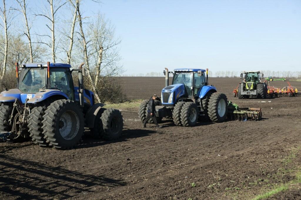 1,5 тысячи гектаров леса восстановят в 2021 году в Волгоградской области