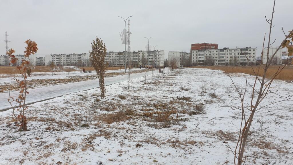 Пустырь за бюджетные деньги: в дело о провальном озеленении парка в Волжском вмешалась прокуратура