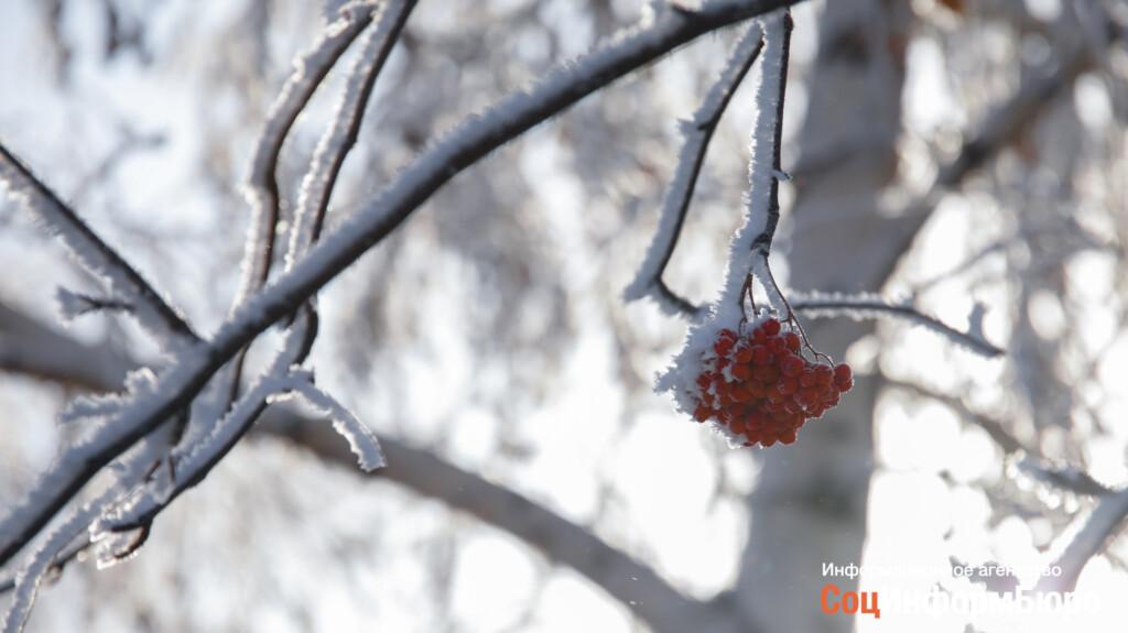 До -17 похолодает в Волгограде